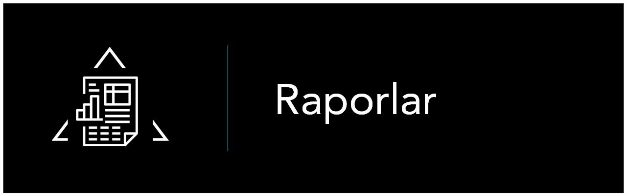 rapor1